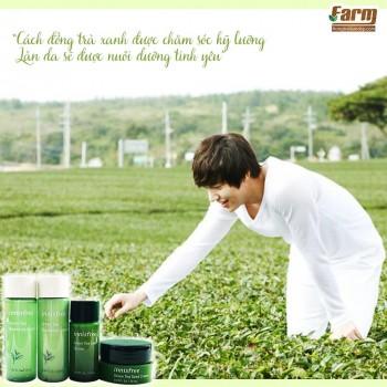 Bộ Dưỡng Da Trà Xanh 4 món Innisfree Green Tea Special Kit